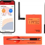Meatstick Wi-Fi-Bluetooth Food Thermometer Review