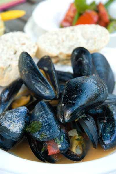 Mussels in a pile