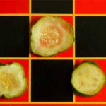 pickle slices arranged on red squares of checkerboard