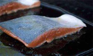 Salmon fillet on a hot griddle