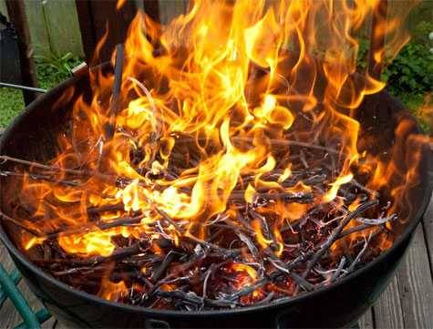 weber grill burning vines